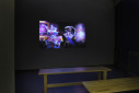 My Fiction is Real exhibition view- photo Douglas Atfield
