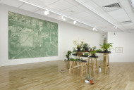 Occupied with Plants - installation  photo by Doug Atflied